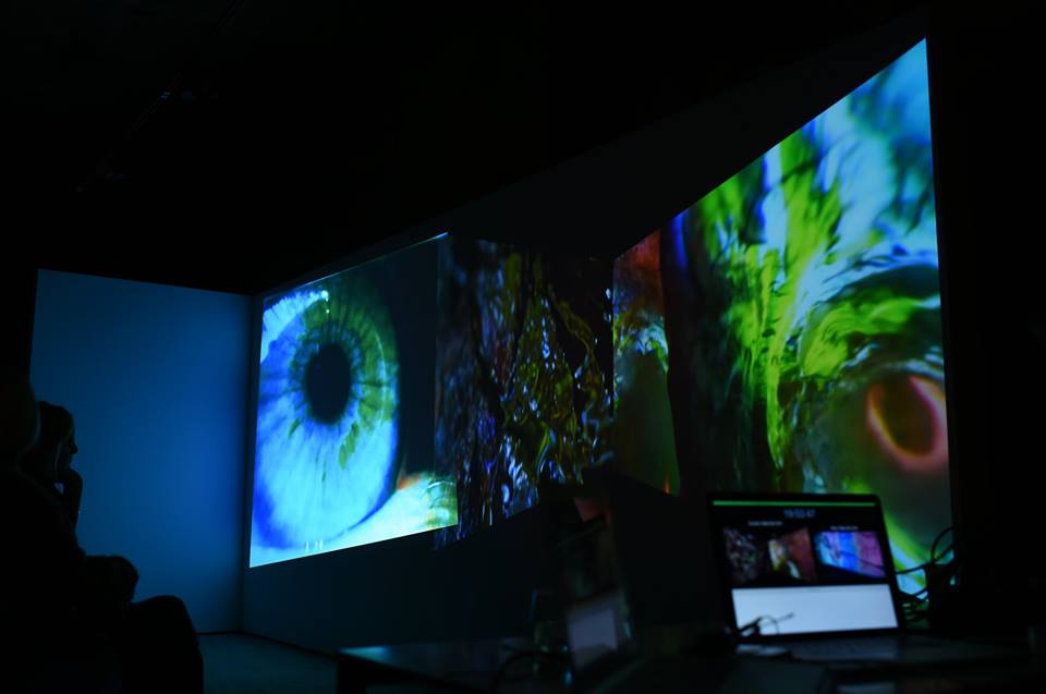 In- and out-sights of Pipilotti Rist the dog